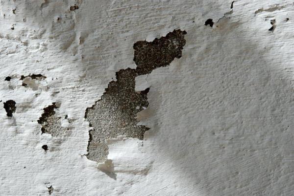 Como quitar la humedad de las paredes con pintura